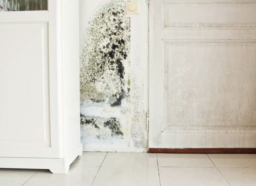 Avoid mold with a dehumidifier in your laundry room.
