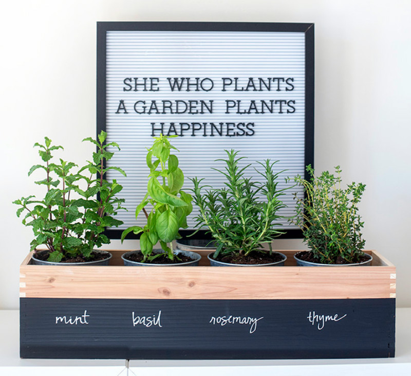 A herb planter for a crafty mom. Source: Alice and Lois