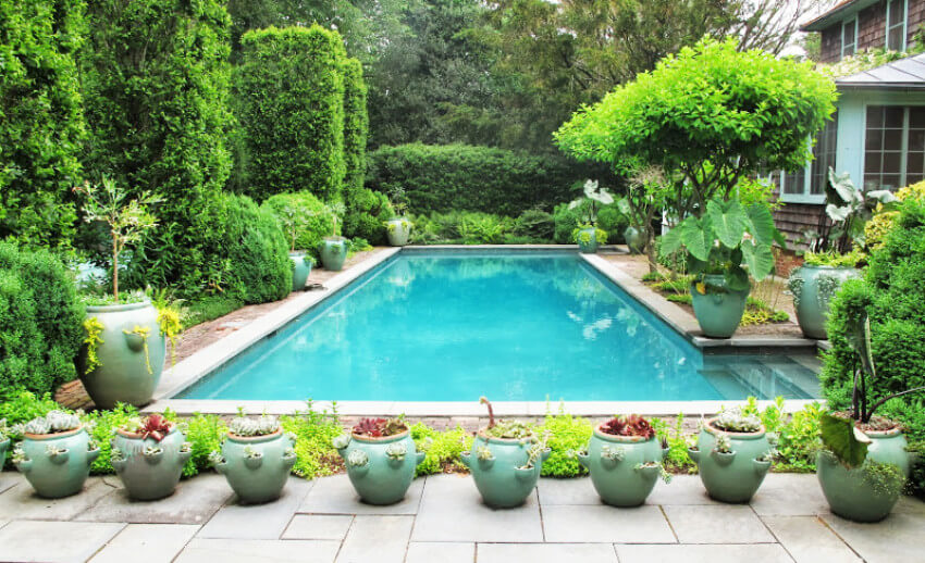 Your pool will look amazing once you create privacy with plants.