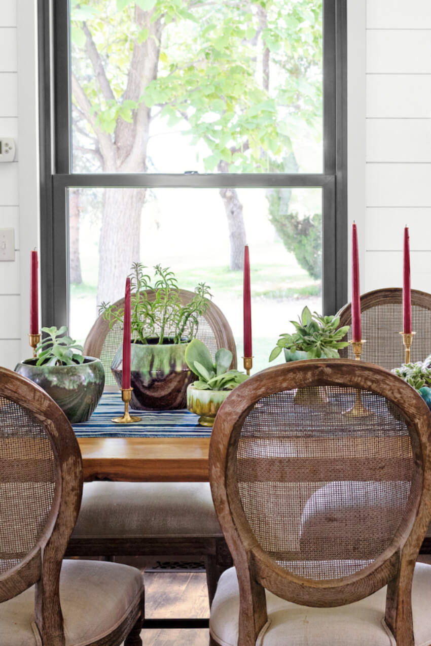 Succulents are easy to set up with minimal maintenance. Source: Country Living