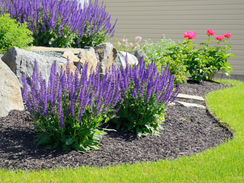 What Are The Benefits of Landscape Mulch Installation?