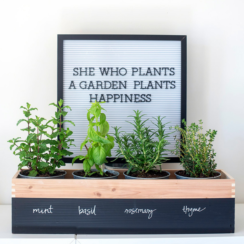 A simple herb garden can prove an invaluable addition to mom's cooking! Source: Alice and Louis