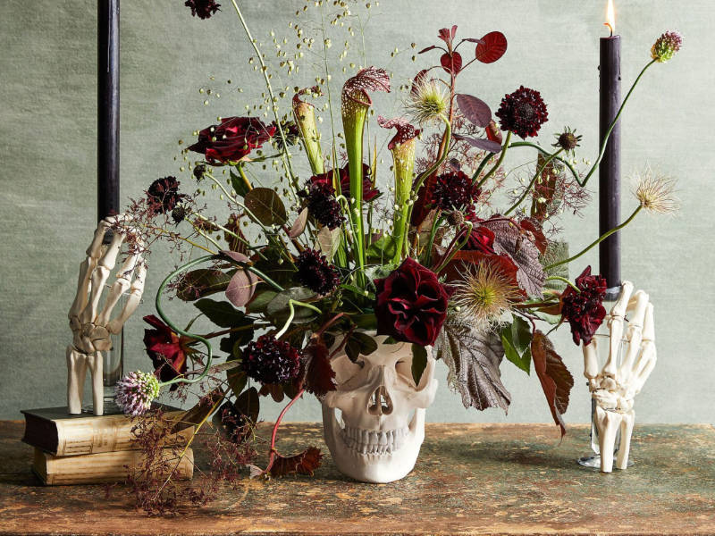 7 Spooky Flowers to Add To Your Halloween Decor