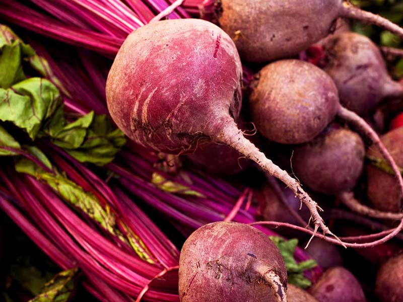 beets are healthy and easy to plant