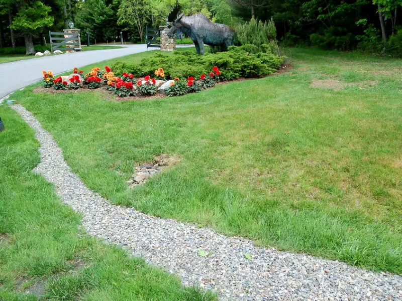 What You Should Know About Water Drainage in Your Own Yard