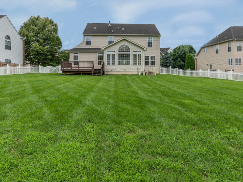 6 Best Organic Practices for Greener Lawn Care