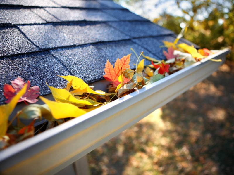 5 Reasons Why You Should Clean Your Gutters Right Now
