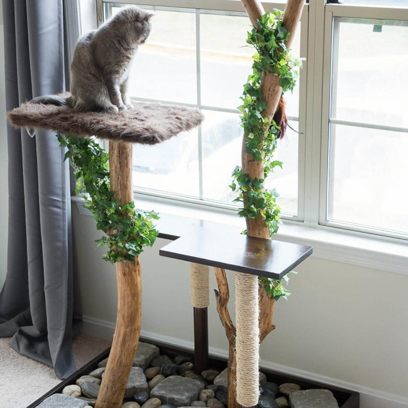 Cats love to climb, so create opportunities for them! Source: Family Handyman