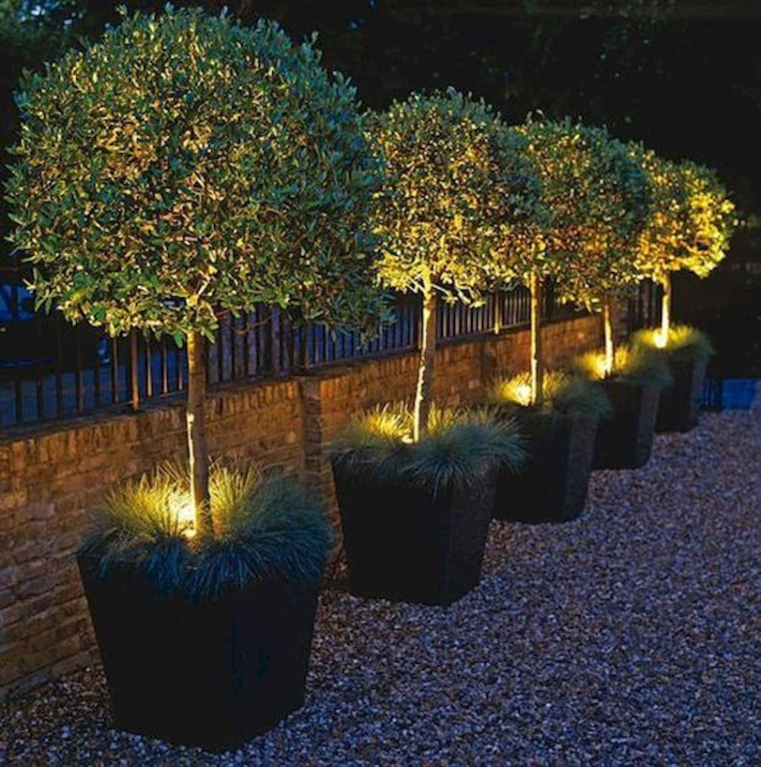 Invest in lighting ideas to complete your landscape design.