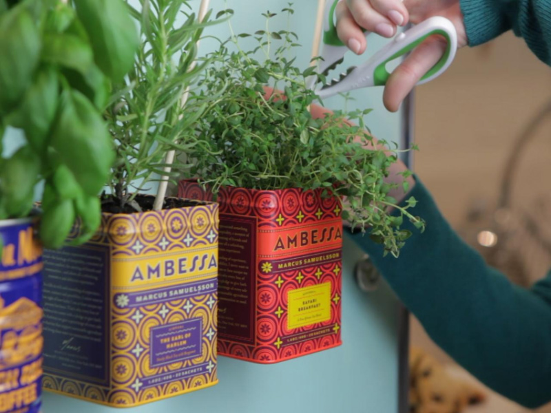 How to Make a Magnetic Herb Garden for the Fridge