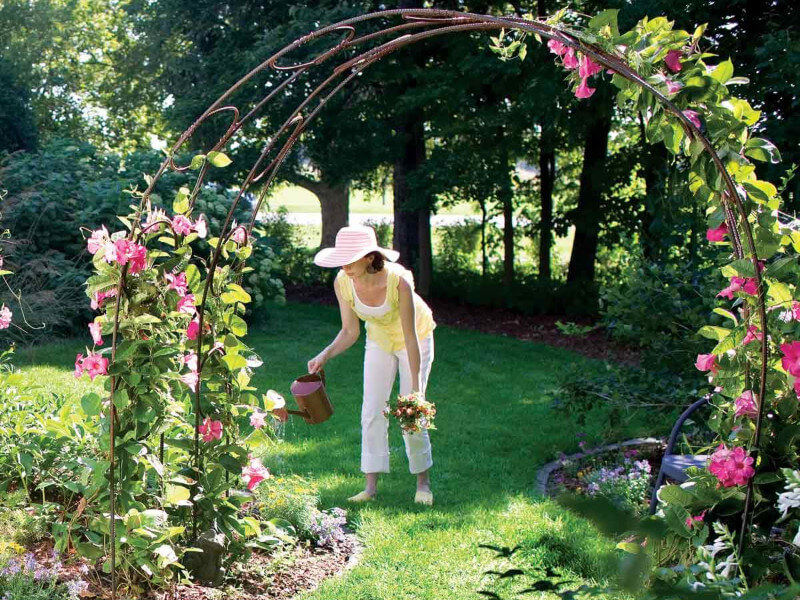 6 Gorgeous Garden Arches and What to Plant on Them