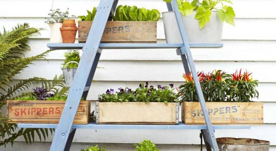 5 Stylish Container Gardens That Will Bring Joy To Your Home